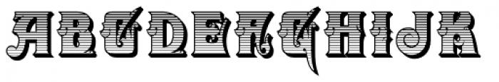 Zanderley Initials Font UPPERCASE