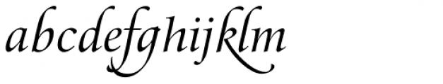 Zapf Renais SB Italic Swash Font LOWERCASE