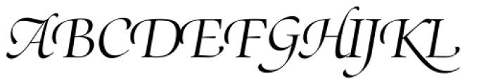 Zapf Renais SB Light Italic Swash Font UPPERCASE