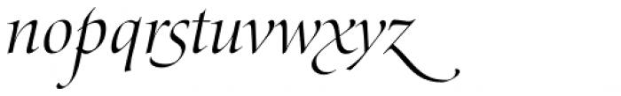 Zapf Renais SB Light Italic Swash Font LOWERCASE