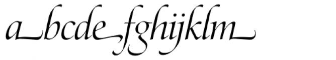 Zapf Renaissance Antiqua Swashed Light Italic Font LOWERCASE