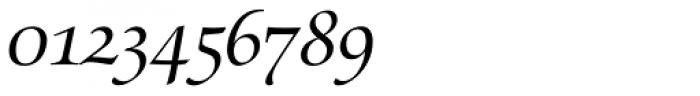 Zapf Renaissance B EF Book Italic Swash Font OTHER CHARS