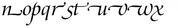Zapf Renaissance B EF Book Italic Swash Font LOWERCASE