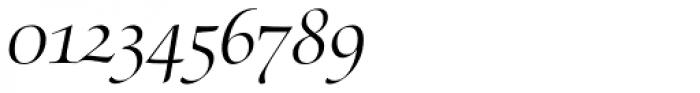 Zapf Renaissance B EF Light Italic Swash Font OTHER CHARS
