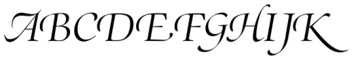 Zapf Renaissance B EF Light Italic Swash Font UPPERCASE