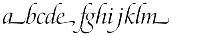 Zapf Renaissance B EF Light Italic Swash Font LOWERCASE