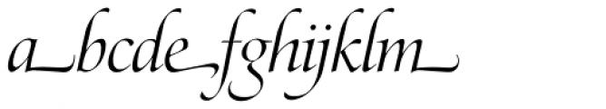 Zapf Renaissance H EF Light Italic Swash Font LOWERCASE