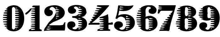 Zebraesq Font OTHER CHARS