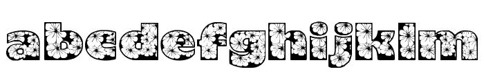 Zensyrom Font LOWERCASE