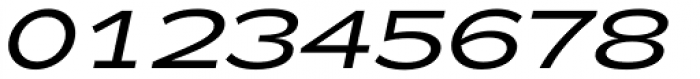 Zeppelin 42 Italic Font OTHER CHARS