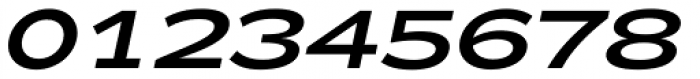 Zeppelin 43 Italic Font OTHER CHARS