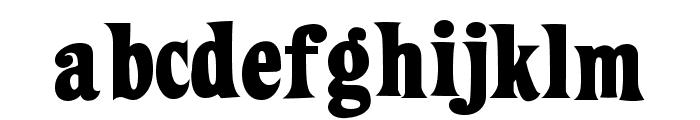 ZiggyStandard Font LOWERCASE