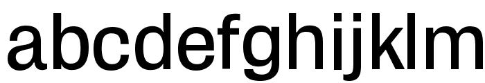 Zikketica Font LOWERCASE