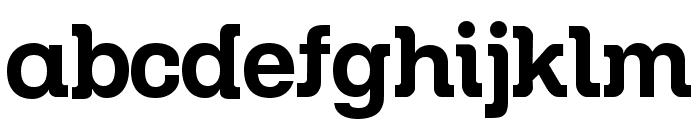 Zil Semi Slab Font LOWERCASE