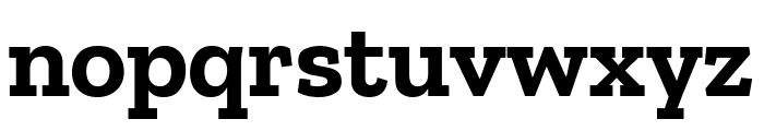 Zilla Slab Bold Font LOWERCASE