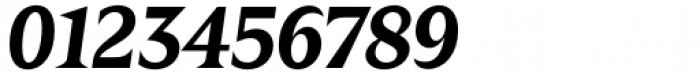 Zin Display Bold Italic Font OTHER CHARS