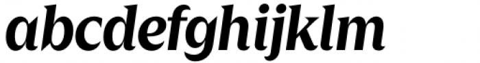 Zin Display Bold Italic Font LOWERCASE