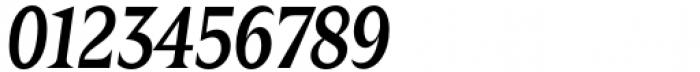 Zin Display Condensed Medium Italic Font OTHER CHARS