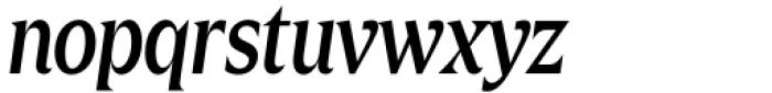 Zin Display Condensed Medium Italic Font LOWERCASE