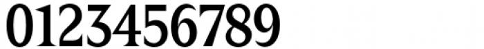 Zin Display Condensed Medium Font OTHER CHARS