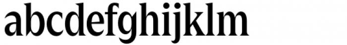 Zin Display Condensed Medium Font LOWERCASE