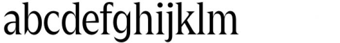 Zin Display Condensed Regular Font LOWERCASE