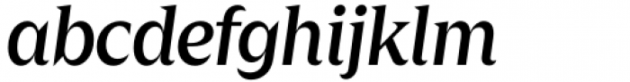 Zin Display Medium Italic Font LOWERCASE