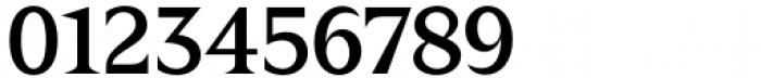 Zin Display Medium Font OTHER CHARS
