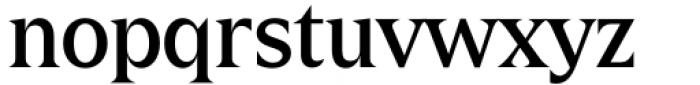 Zin Display Medium Font LOWERCASE