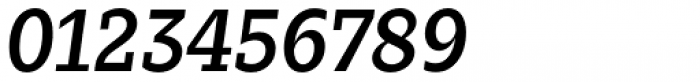 Zin Slab Medium Italic Font OTHER CHARS