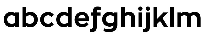 ZonaPro-Bold Font LOWERCASE