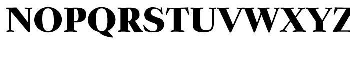 Zocalo Display Black Font UPPERCASE