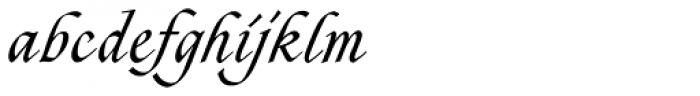 Zola D Regular Font LOWERCASE