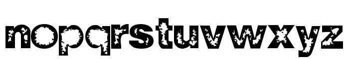 ZWISDOM Font LOWERCASE