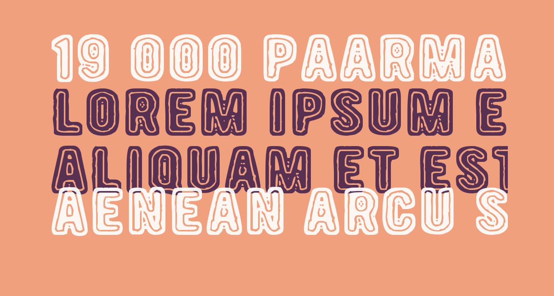 19 000 paarmaa