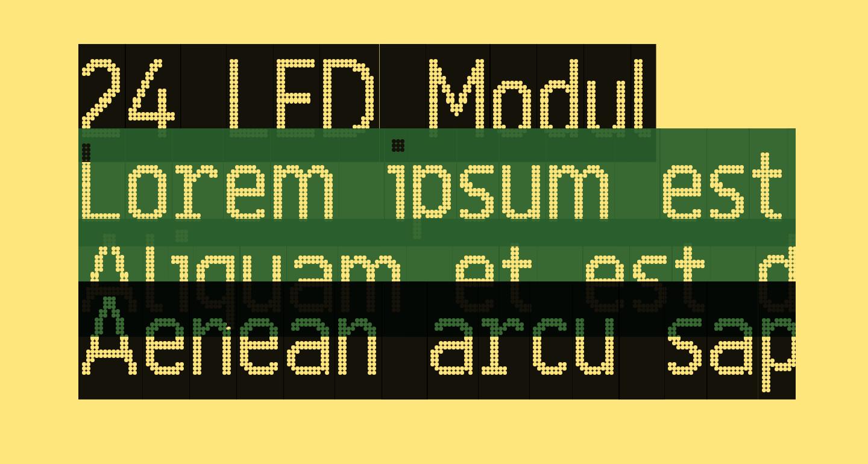 24 LED Modul