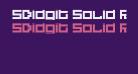 5Didgit Solid Regular