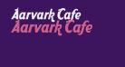 Aarvark Cafe
