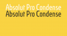 Absolut Pro Condensed Book reduced