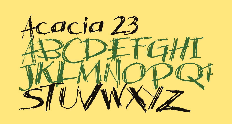 Acacia 23