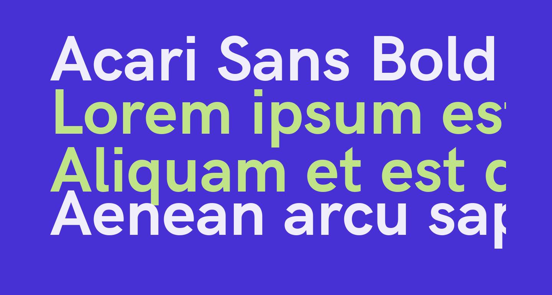 Acari Sans Bold