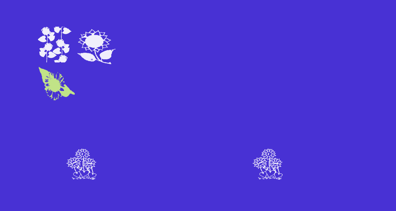 AEZsunflowers