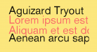 Aguizard Tryout