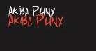 Akiba Punx
