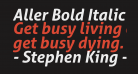 Aller Bold Italic