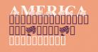 America LSF