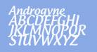 Androgyne