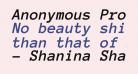 Anonymous Pro Bold Italic