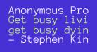 Anonymous Pro Regular