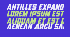 Antilles Expanded Italic